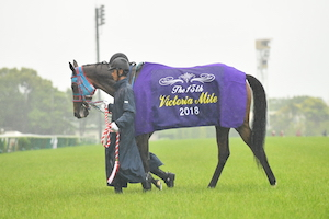 <br /> <b>Notice</b>:  Undefined variable: term in <b>/home/kusanagi/thoroughbred-life.net/DocumentRoot/wp-content/themes/horses_life/page-great-horses.php</b> on line <b>48</b><br /> <br /> <b>Notice</b>:  Trying to get property of non-object in <b>/home/kusanagi/thoroughbred-life.net/DocumentRoot/wp-content/themes/horses_life/page-great-horses.php</b> on line <b>48</b><br />